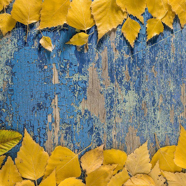 baskılı fon perde ahşap masa arka plan sonbahar yaprak desenli