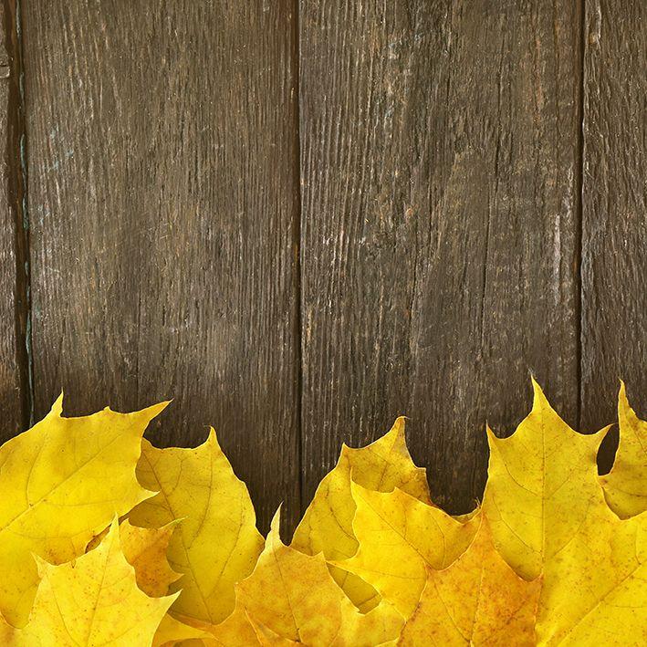 baskılı fon perde ahşap masa sonbahar yaprak desenli sarı