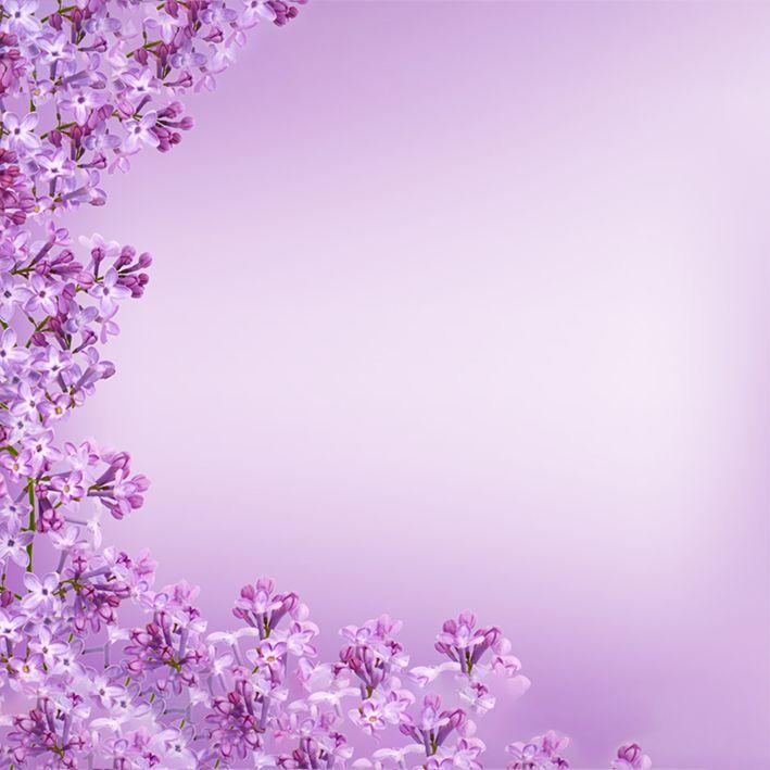 baskılı fon perde arka plan mor leylak çiçek desenli