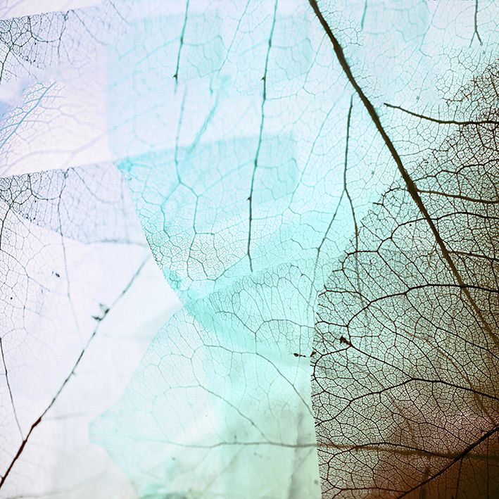 baskılı fon perde damar yaprak etkili mor, turkuaz, kahverengi desenli