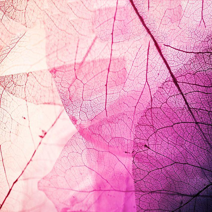 baskılı fon perde damarlı yaprak desenli pembe