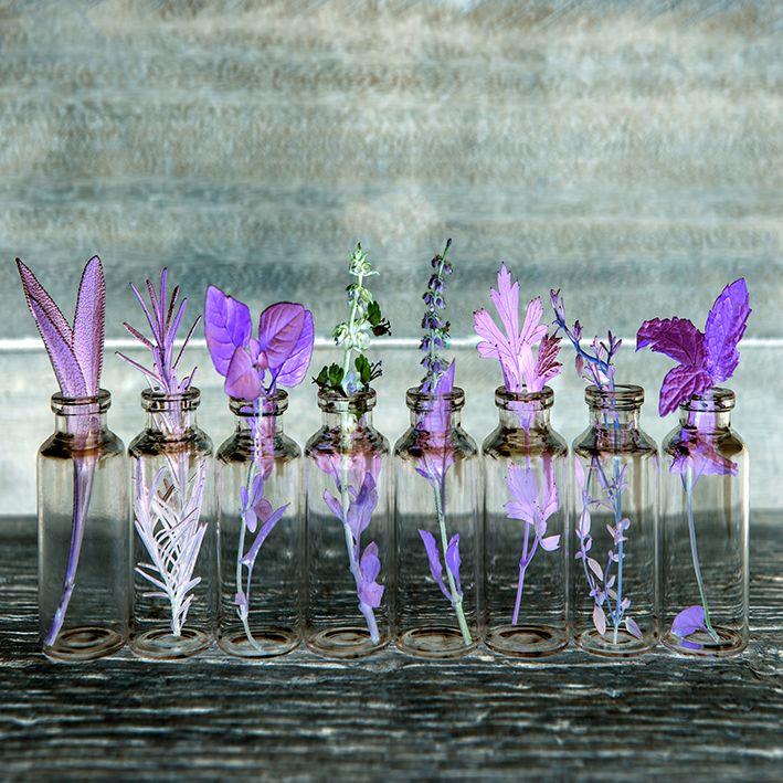 baskılı fon perde mor renk etkili tüy ve bahar çiçeği desenli