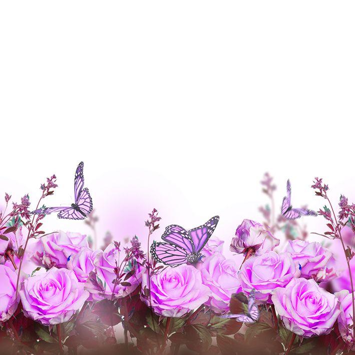 baskılı fon perde pembe gül ve kelebek etkili bahar çiçeği desenli