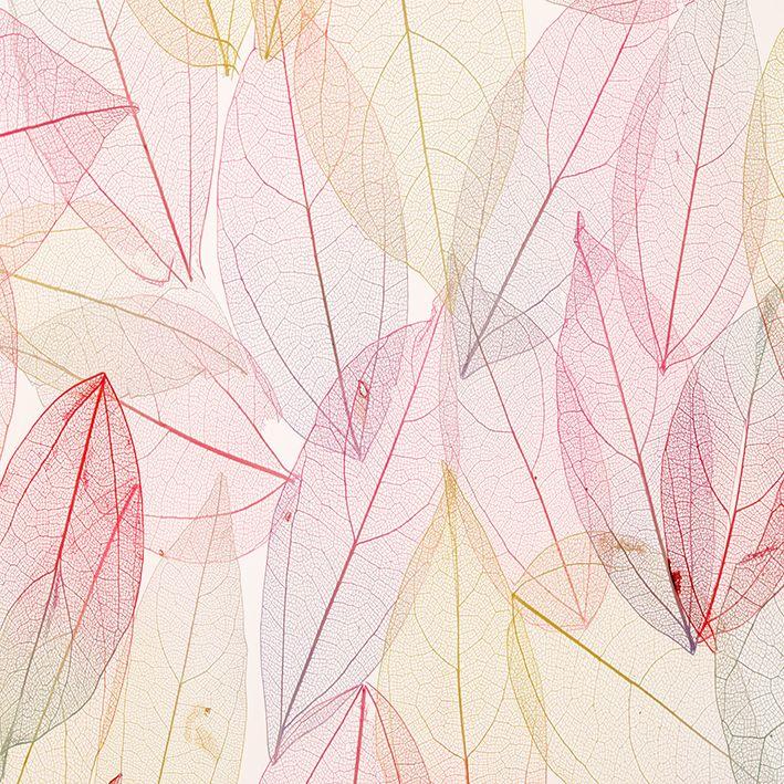 baskılı fon perde pembe rengi tonları ve yaprak desenli