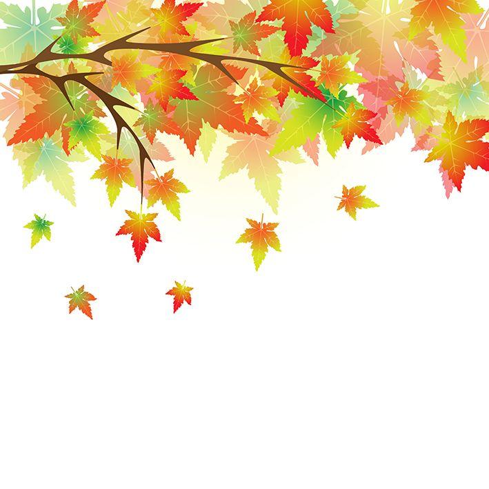 baskılı fon perde sarı sonbahar yaprak desenli sarı