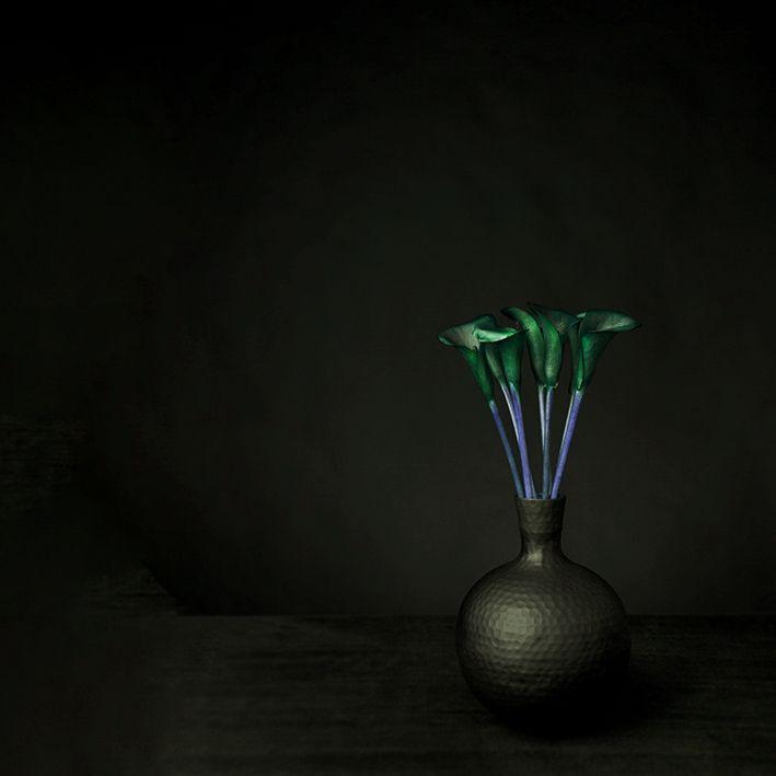 baskılı fon perde siyah arka plan etkili yeşil lale desenli
