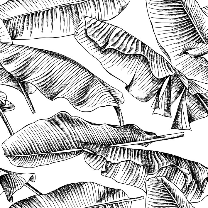 baskılı fon perde siyah ve beyaz palmiye yaprak desenli