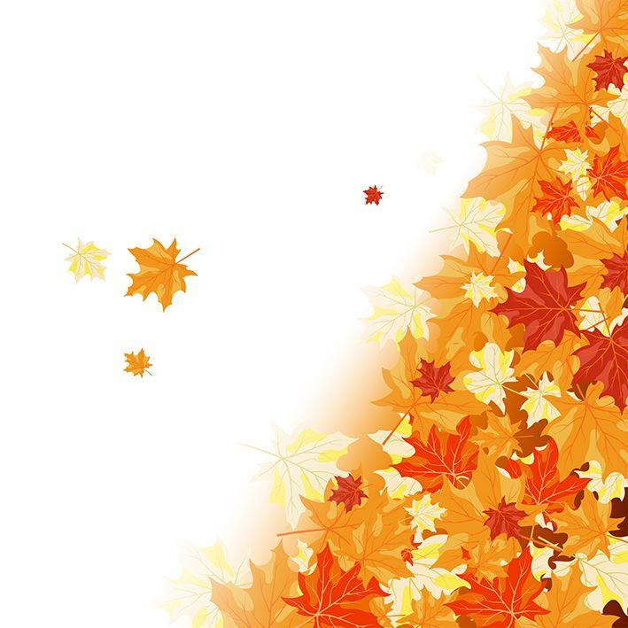 baskılı fon perde sonbahar akçaağaç yaprak desenli sarı kırmızı