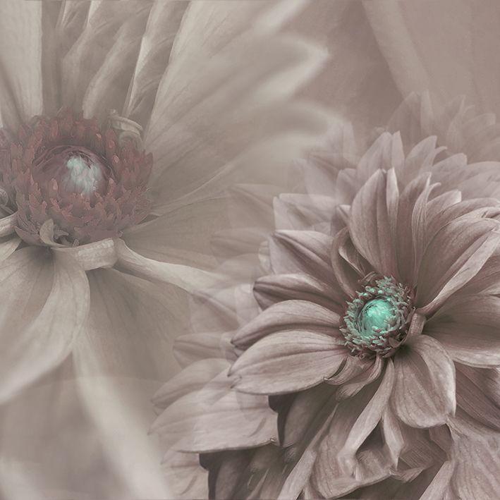 baskılı fon perde soyut arka plan kahverengi çiçek desenli