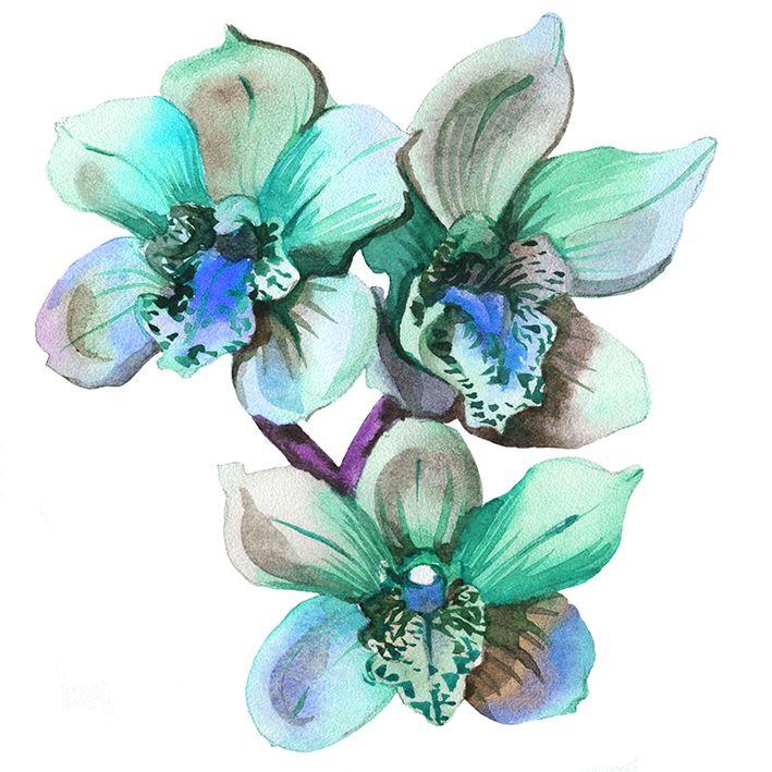 baskılı fon perde suluboya etkili yeşil tonlarda orkide çiçek desenli